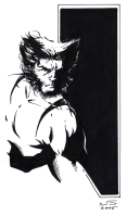 1- Wolverine