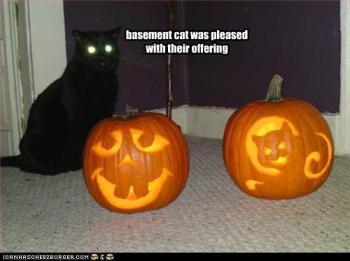 O Gato do Porão está satisfeito com sua oferenda.