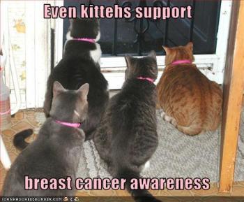 Até gatinhos apoiam a prevenção contra câncer de mama