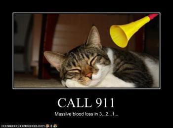 Ligue para a emergencia. Perda massiva de sangue em 3... 2... 1...
