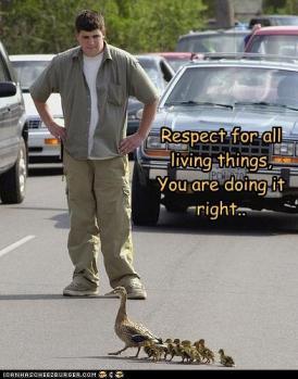 Respeito por todas as coisas vvas: você está fazendo direito.