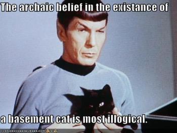 A crença arcaica na existência do gato do porão é, em sua maior parte, ilógica.